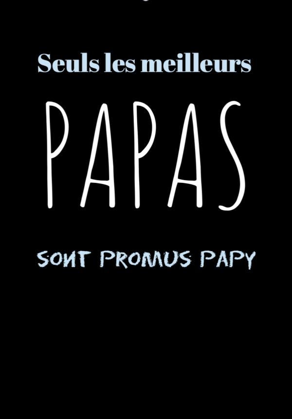 """t-shirt personnalisé homme citation """"meilleurs papas"""""""